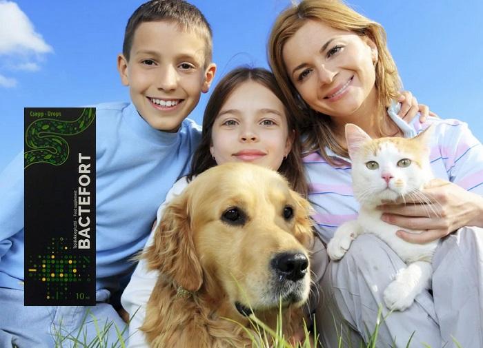 Bactefort megszabadulni a paraziták: megszabadulni a helminth fertőzés, bőr problémák!